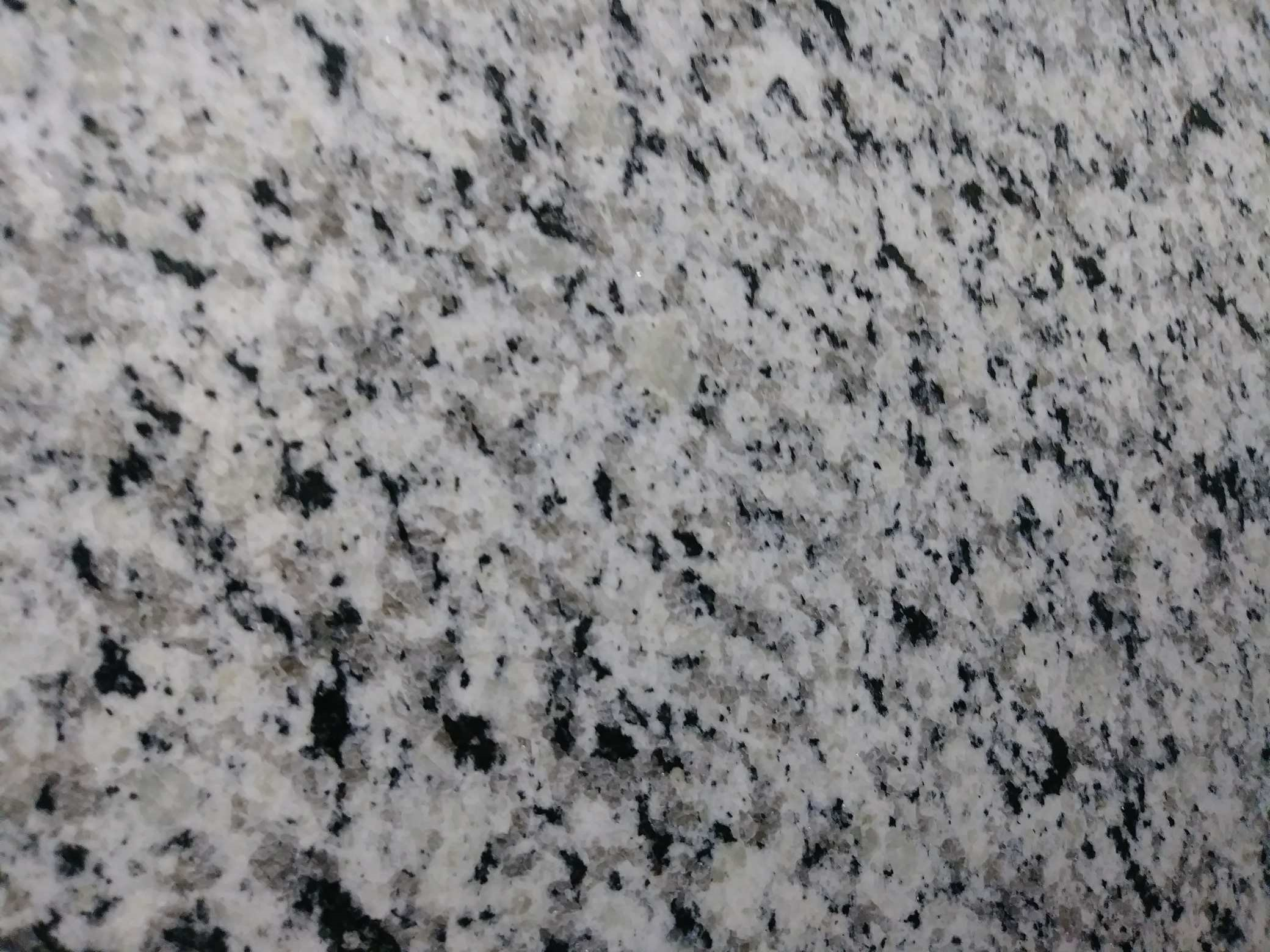 Forteza White Granite